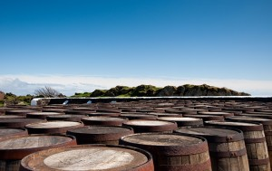 Scotch whisky exports rise by 31%